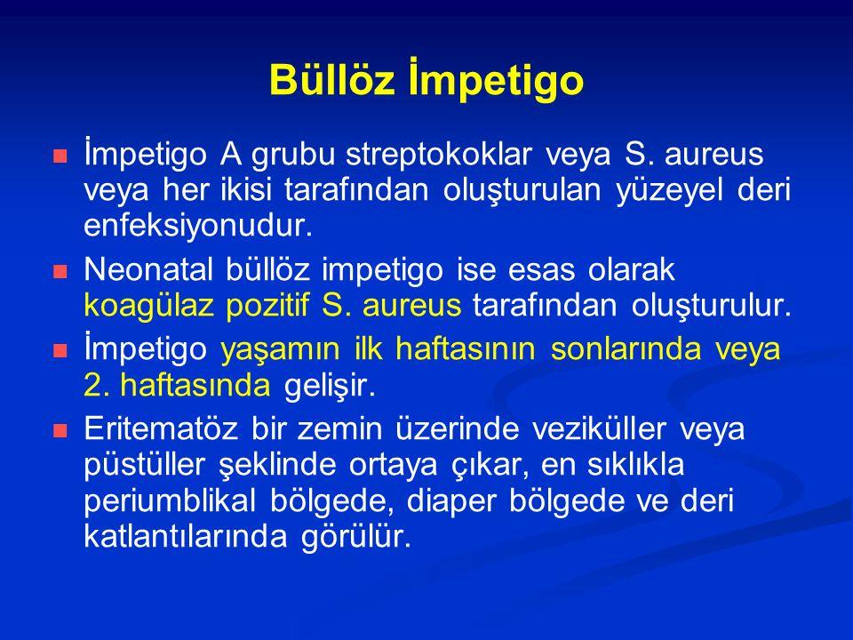Büllöz İmpetigo İmpetigo A grubu streptokoklar veya S. aureus veya her ikisi tarafından oluşturulan yüzeyel deri enfeksiyonudur. Neonatal büllöz impet