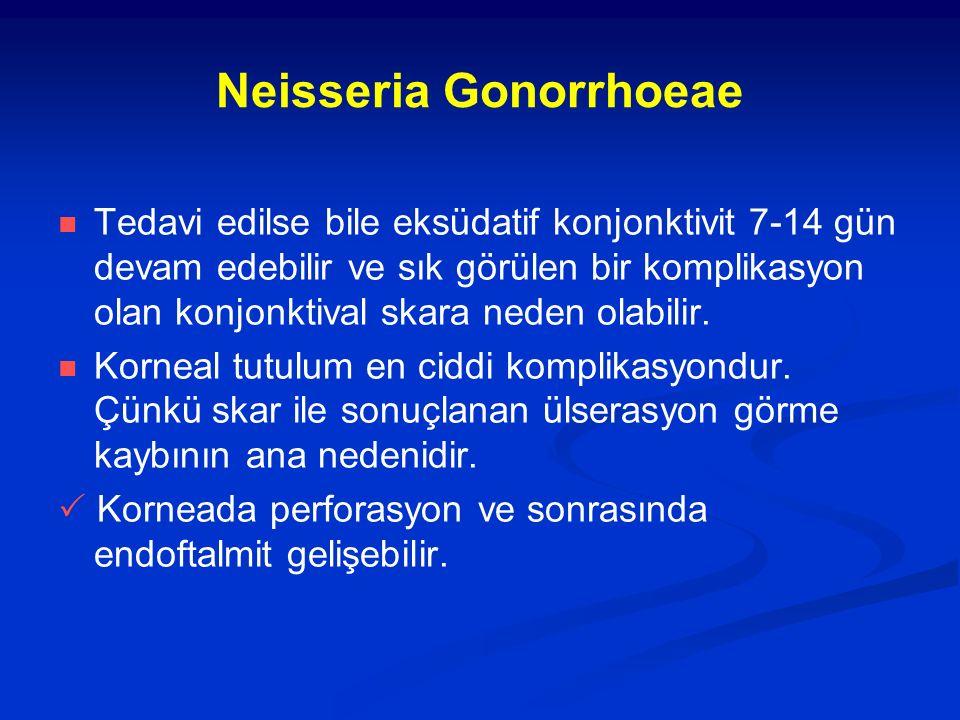 Neisseria Gonorrhoeae Tedavi edilse bile eksüdatif konjonktivit 7-14 gün devam edebilir ve sık görülen bir komplikasyon olan konjonktival skara neden olabilir.