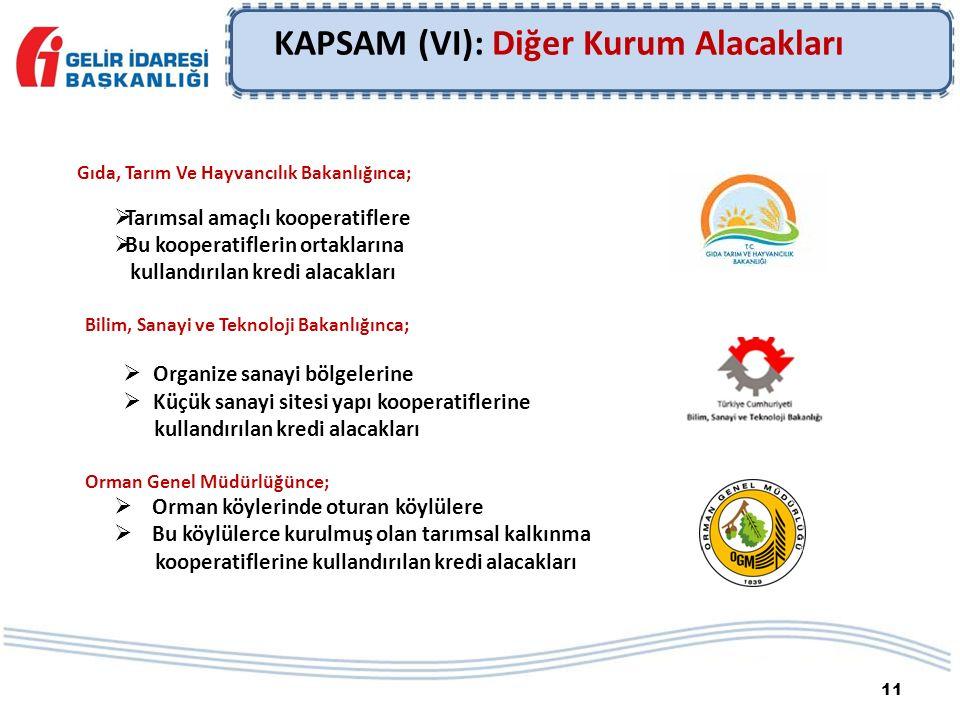 11 KAPSAM (VI): Diğer Kurum Alacakları Gıda, Tarım Ve Hayvancılık Bakanlığınca;  Tarımsal amaçlı kooperatiflere  Bu kooperatiflerin ortaklarına kull