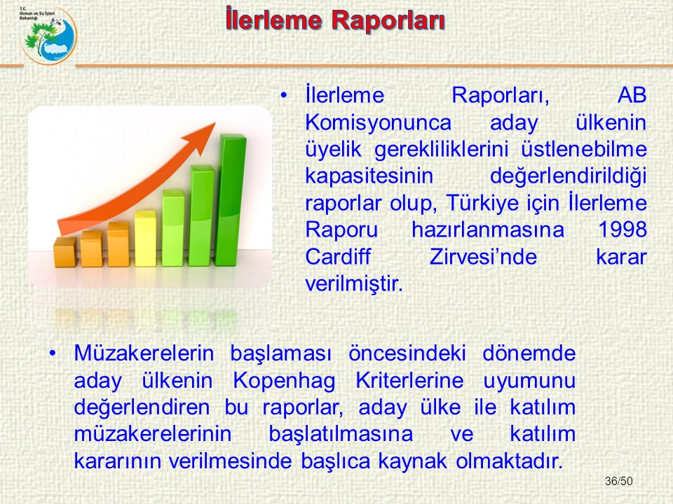 36/50 İlerleme Raporları, AB Komisyonunca aday ülkenin üyelik gerekliliklerini üstlenebilme kapasitesinin değerlendirildiği raporlar olup, Türkiye için İlerleme Raporu hazırlanmasına 1998 Cardiff Zirvesi'nde karar verilmiştir.