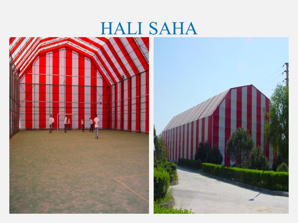 HALI SAHA