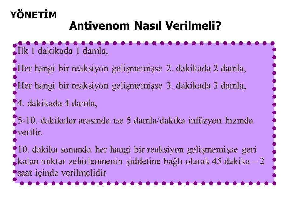 YÖNETİM Antivenom Nasıl Verilmeli. İlk 1 dakikada 1 damla, Her hangi bir reaksiyon gelişmemişse 2.