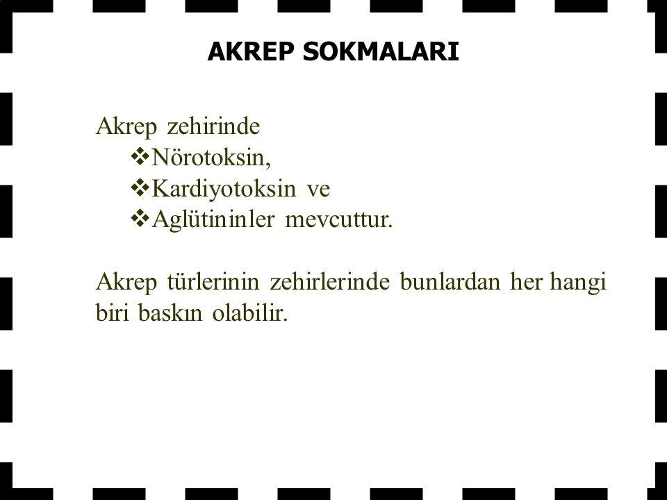 AKREP SOKMALARI Akrep zehirinde  Nörotoksin,  Kardiyotoksin ve  Aglütininler mevcuttur.