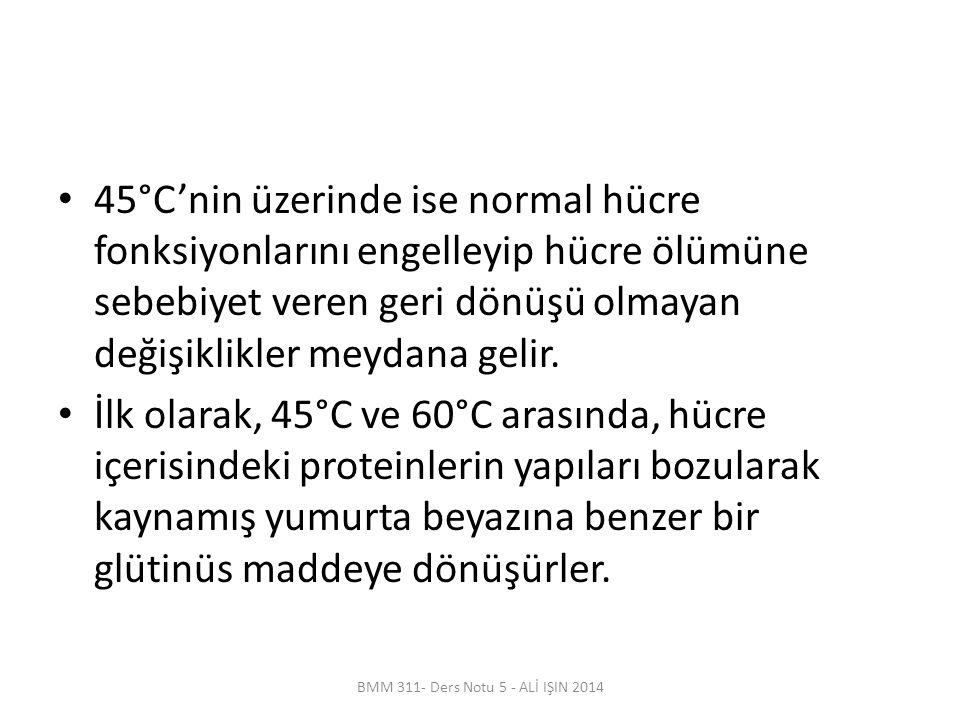 45°C'nin üzerinde ise normal hücre fonksiyonlarını engelleyip hücre ölümüne sebebiyet veren geri dönüşü olmayan değişiklikler meydana gelir.