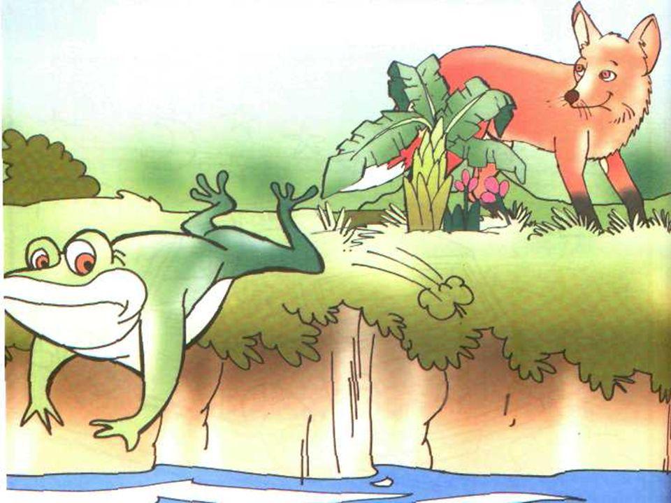 KURBAĞA DOKTOR OLMUŞ Kendini beğenmiş bir kurbağa varmış.