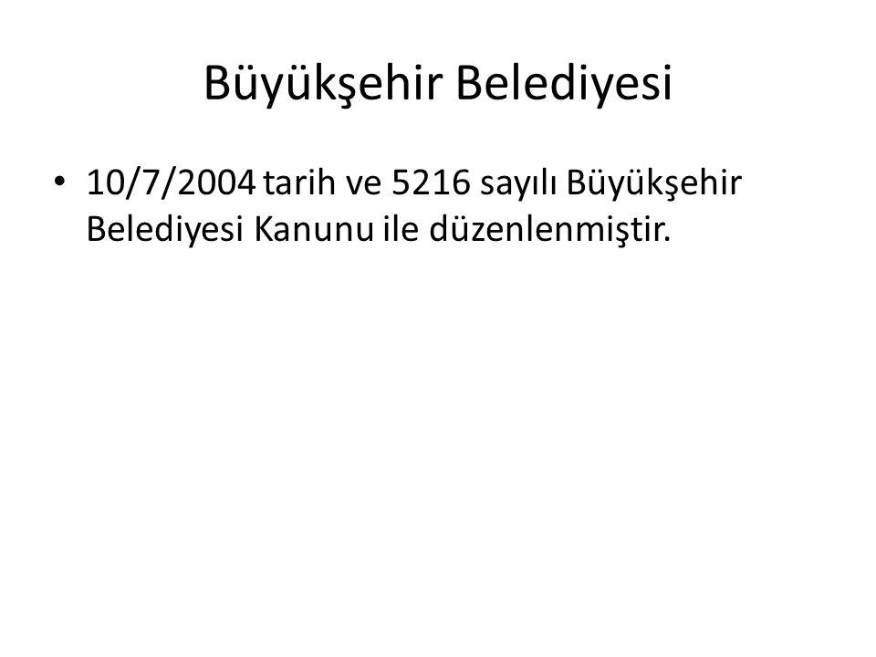Büyükşehir Belediyesi 10/7/2004 tarih ve 5216 sayılı Büyükşehir Belediyesi Kanunu ile düzenlenmiştir.