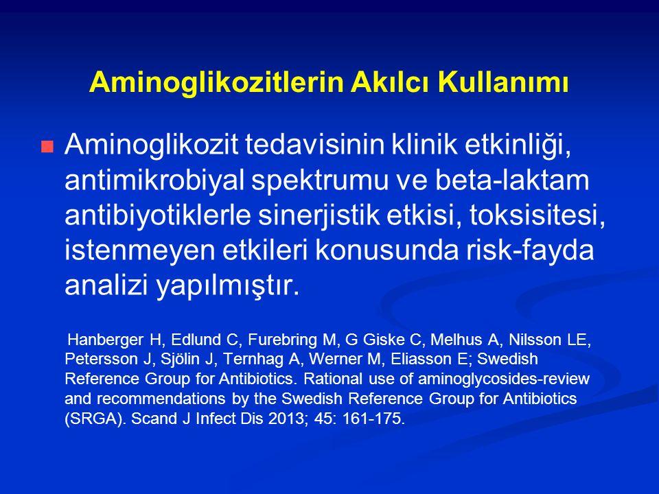 Aminoglikozitlerin Akılcı Kullanımı Aminoglikozit tedavisinin klinik etkinliği, antimikrobiyal spektrumu ve beta-laktam antibiyotiklerle sinerjistik e