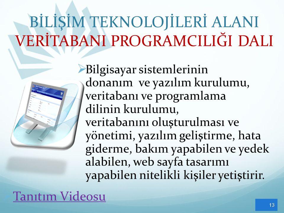 BİLİŞİM TEKNOLOJİLERİ ALANI VERİTABANI PROGRAMCILIĞI DALI  Bilgisayar sistemlerinin donanım ve yazılım kurulumu, veritabanı ve programlama dilinin ku