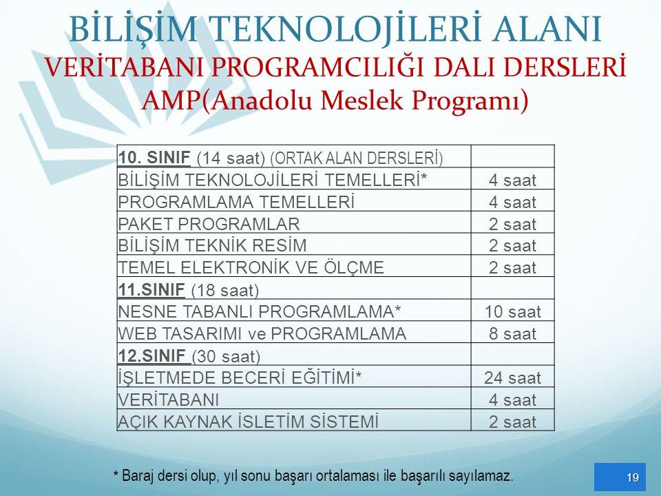 BİLİŞİM TEKNOLOJİLERİ ALANI VERİTABANI PROGRAMCILIĞI DALI DERSLERİ AMP(Anadolu Meslek Programı) 19 10. SINIF (14 saat) (ORTAK ALAN DERSLERİ) BİLİŞİM T