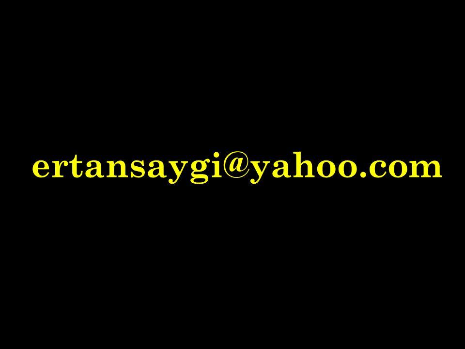 ertansaygi@yahoo.com
