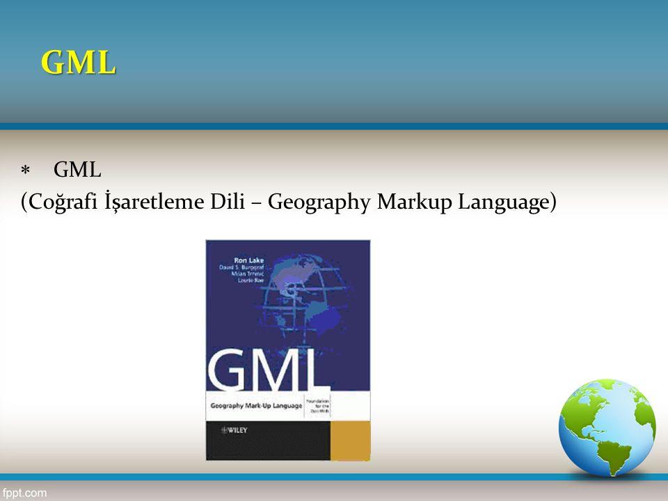 GML  Öznitelik,  Geometri,  Koordinat referans sistemi,  Topoloji,  Zaman,  Dinamik özellikler,  Kapsam,  Ölçü birimleri,  Yönler,  Gözlemler ve  Harita sunum kuralları