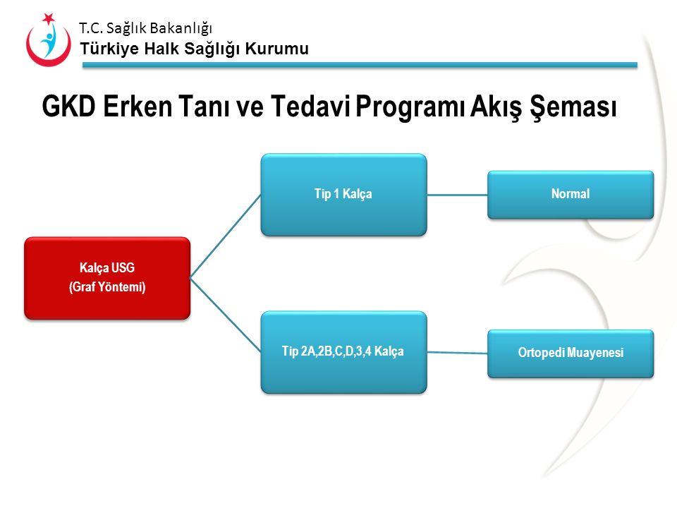 T.C. Sağlık Bakanlığı Türkiye Halk Sağlığı Kurumu GKD Erken Tanı ve Tedavi Programı Akış Şeması Doğum sonrası ilk 48 saat aileyi bilgilendirme 3-4 haf
