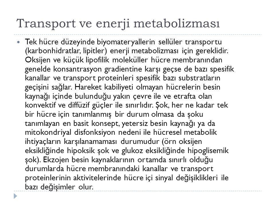 Transport ve enerji metabolizması Tek hücre düzeyinde biyomateryallerin sellüler transportu (karbonhidratlar, lipitler) enerji metabolizması için gereklidir.