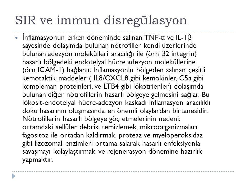 SIR ve immun disregülasyon İ nflamasyonun erken döneminde salınan TNF- α ve IL-1 β sayesinde dolaşımda bulunan nötrofiller kendi üzerlerinde bulunan adezyon molekülleri aracılı ğ ı ile (örn β 2 integrin) hasarlı bölgedeki endotelyal hücre adezyon moleküllerine (örn ICAM-1) ba ğ lanır.