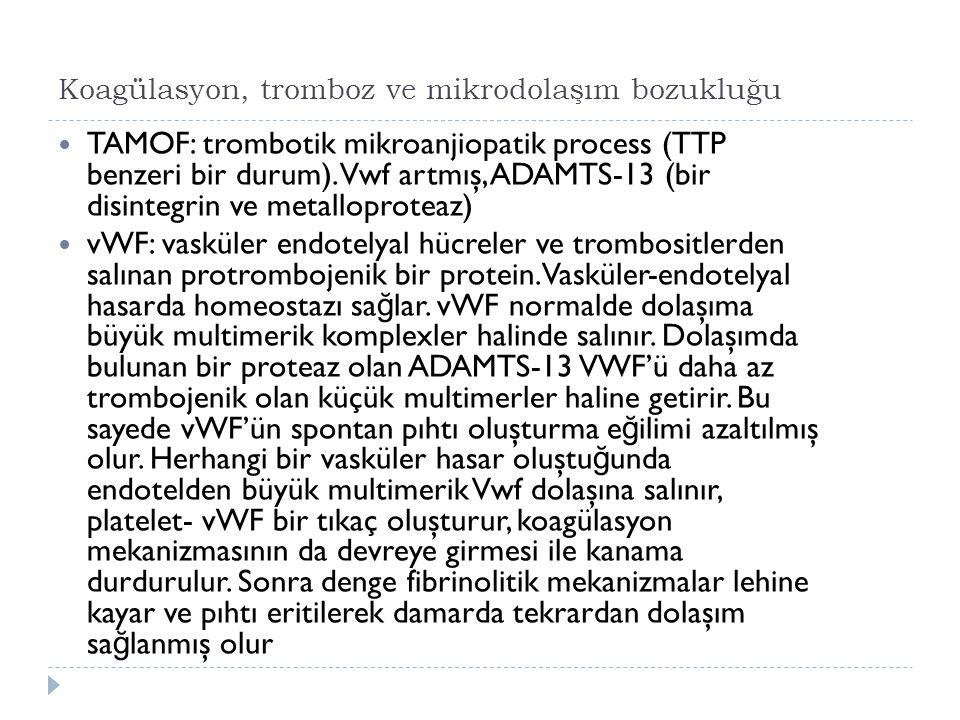 Koagülasyon, tromboz ve mikrodolaşım bozukluğu TAMOF: trombotik mikroanjiopatik process (TTP benzeri bir durum).