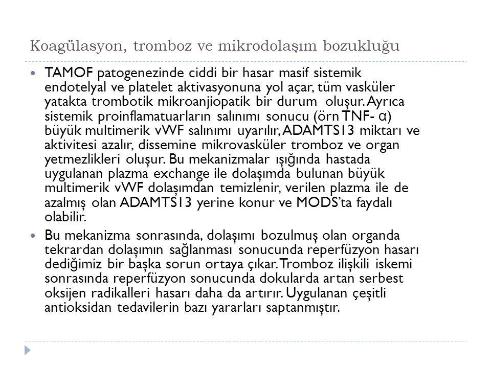 Koagülasyon, tromboz ve mikrodolaşım bozukluğu TAMOF patogenezinde ciddi bir hasar masif sistemik endotelyal ve platelet aktivasyonuna yol açar, tüm vasküler yatakta trombotik mikroanjiopatik bir durum oluşur.