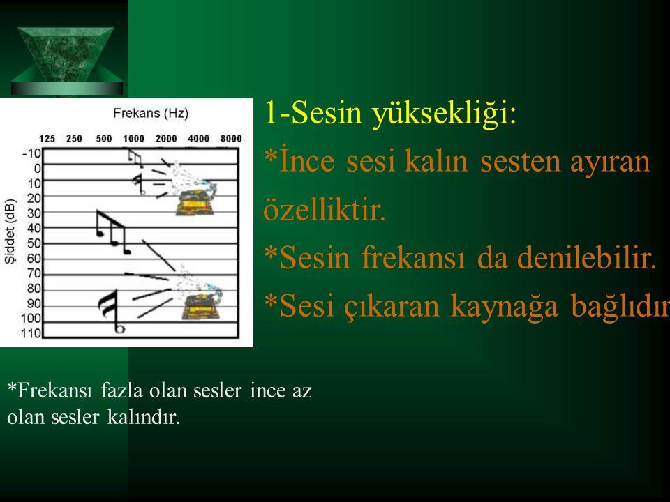 1-Sesin yüksekliği: *İnce sesi kalın sesten ayıran özelliktir.
