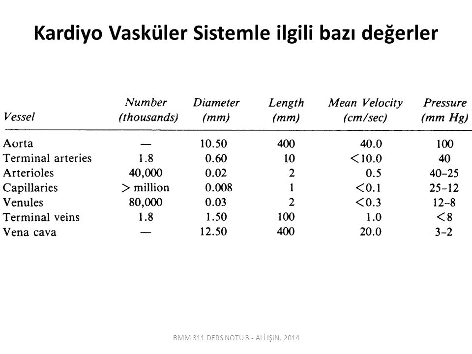 Katater-Sensör Sisteminin Elektriksel Modeli BMM 311 DERS NOTU 3 - ALİ IŞIN, 2014