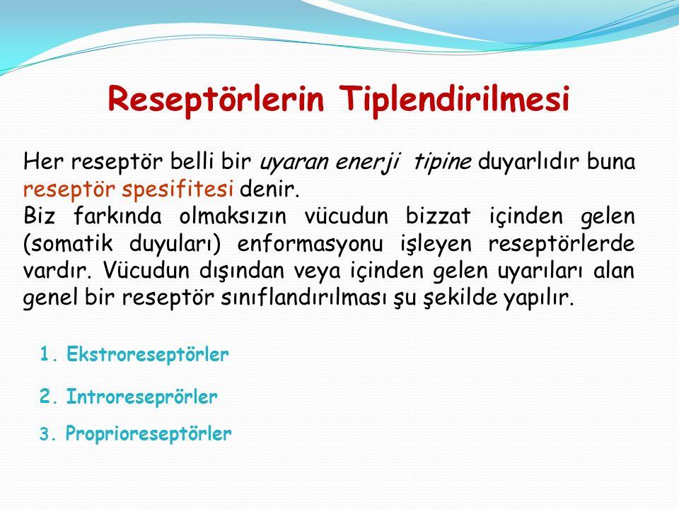 Her reseptör belli bir uyaran enerji tipine duyarlıdır buna reseptör spesifitesi denir.