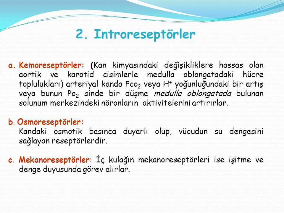 2. Introreseptörler a.Kemoreseptörler: (Kan kimyasındaki değişikliklere hassas olan aortik ve karotid cisimlerle medulla oblongatadaki hücre toplulukl