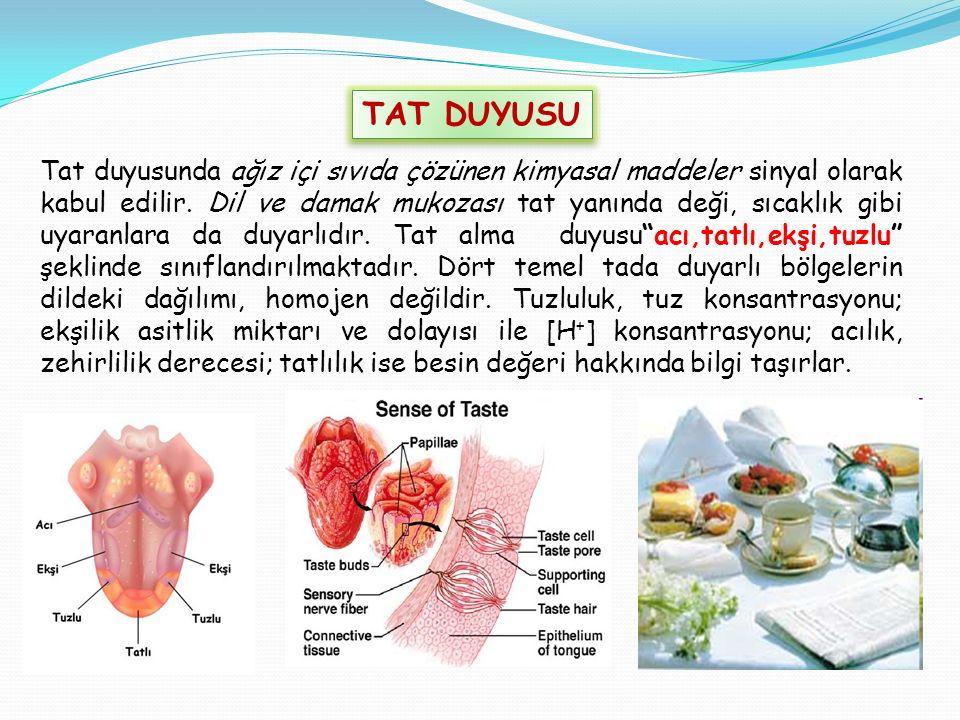 Tat duyusunda ağız içi sıvıda çözünen kimyasal maddeler sinyal olarak kabul edilir.