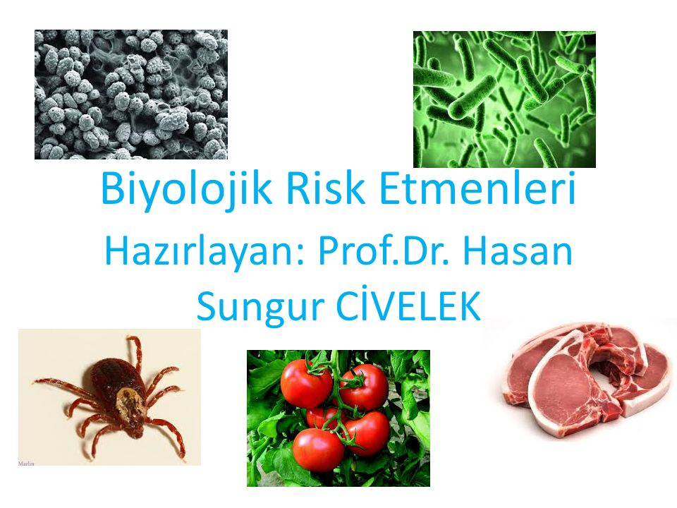 Biyolojik Risk Etmenleri Hazırlayan: Prof.Dr. Hasan Sungur CİVELEK