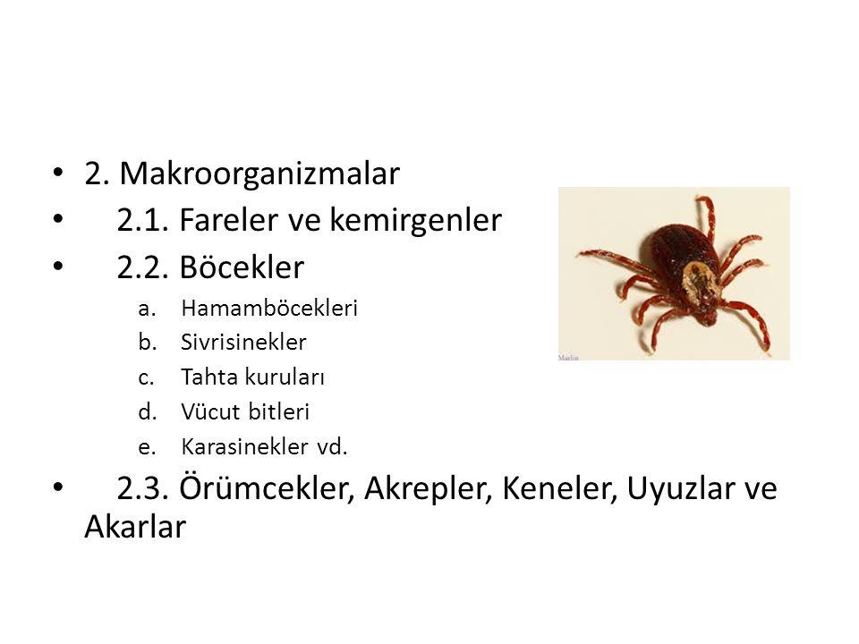 2.Makroorganizmalar 2.1. Fareler ve kemirgenler 2.2.