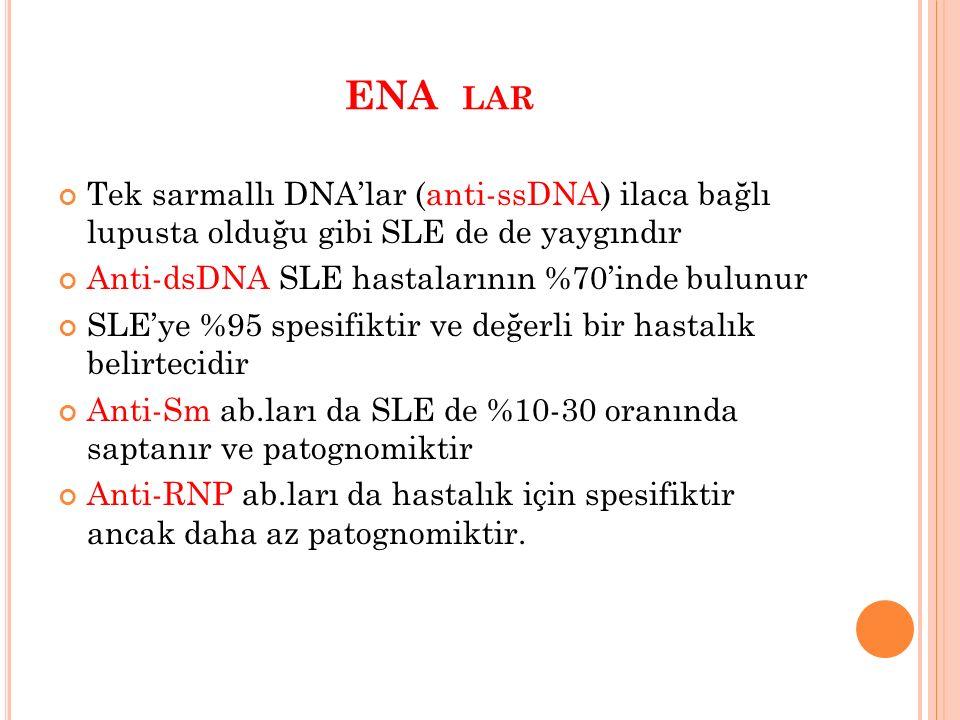 ENA LAR Tek sarmallı DNA'lar (anti-ssDNA) ilaca bağlı lupusta olduğu gibi SLE de de yaygındır Anti-dsDNA SLE hastalarının %70'inde bulunur SLE'ye %95