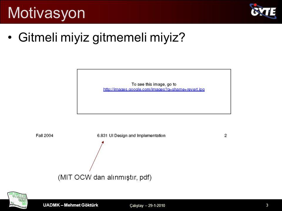 UADMK – Mehmet Göktürk Çalıştay – 29-1-2010 3 Motivasyon Gitmeli miyiz gitmemeli miyiz.