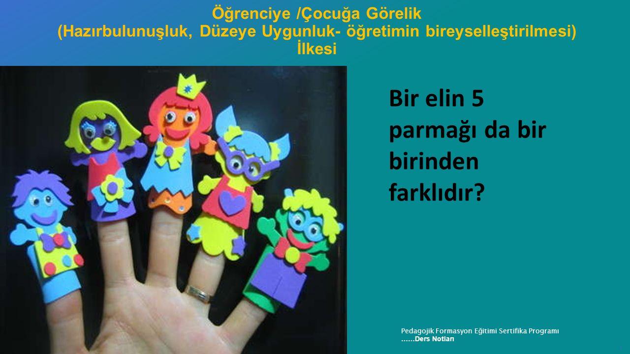 Recep Tayyip Erdoğan Üniversitesi Eğitim Fakültesi Pedagojik Formasyon E ğ itimi Sertifika Programı ……Ders Notları ı Bir elin 5 parmağı da bir birinde