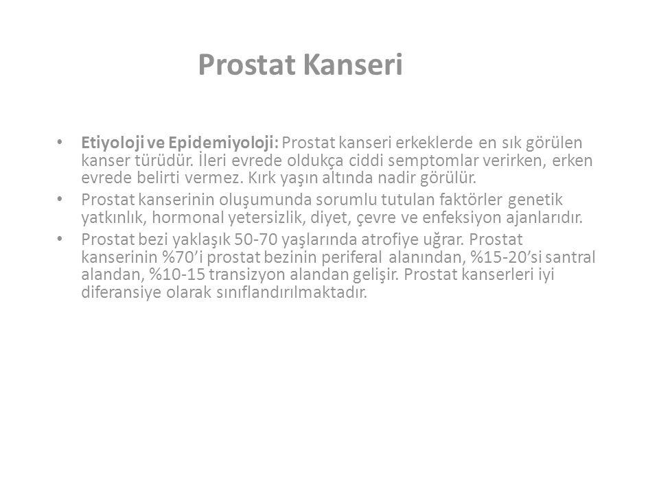 Prostat Kanseri Etiyoloji ve Epidemiyoloji: Prostat kanseri erkeklerde en sık görülen kanser türüdür.