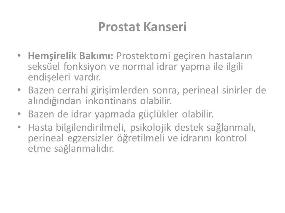 Prostat Kanseri Hemşirelik Bakımı: Prostektomi geçiren hastaların seksüel fonksiyon ve normal idrar yapma ile ilgili endişeleri vardır.