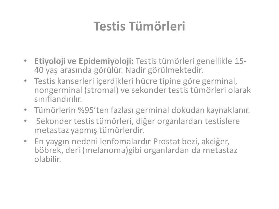 Testis Tümörleri Etiyoloji ve Epidemiyoloji: Testis tümörleri genellikle 15- 40 yaş arasında görülür.