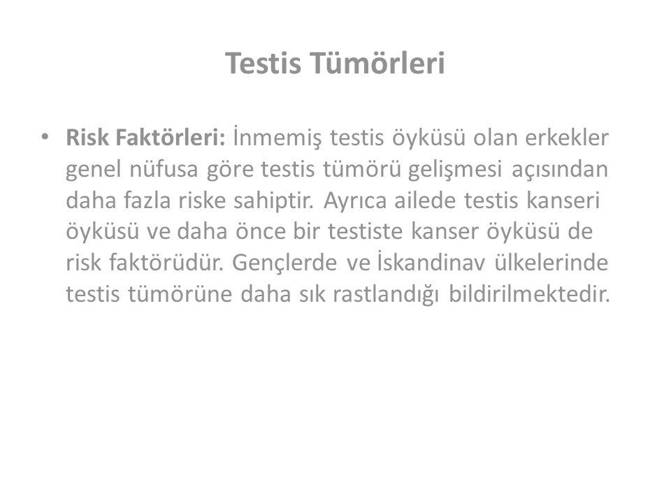 Testis Tümörleri Risk Faktörleri: İnmemiş testis öyküsü olan erkekler genel nüfusa göre testis tümörü gelişmesi açısından daha fazla riske sahiptir.