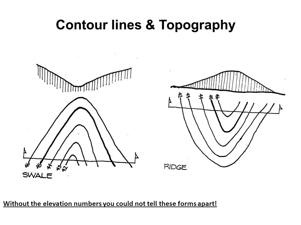 Without the elevation numbers you could not tell these forms apart! Contour lines & Topography
