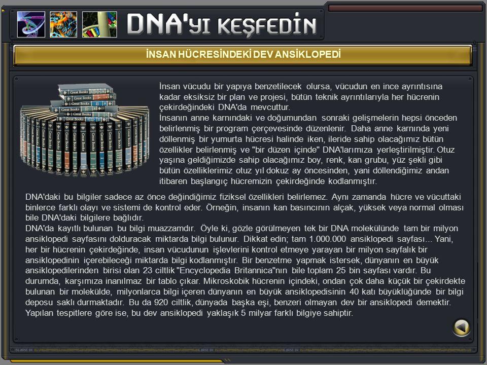 İNSAN HÜCRESİNDEKİ DEV ANSİKLOPEDİ İnsan vücudu bir yapıya benzetilecek olursa, vücudun en ince ayrıntısına kadar eksiksiz bir plan ve projesi, bütün teknik ayrıntılarıyla her hücrenin çekirdeğindeki DNA da mevcuttur.