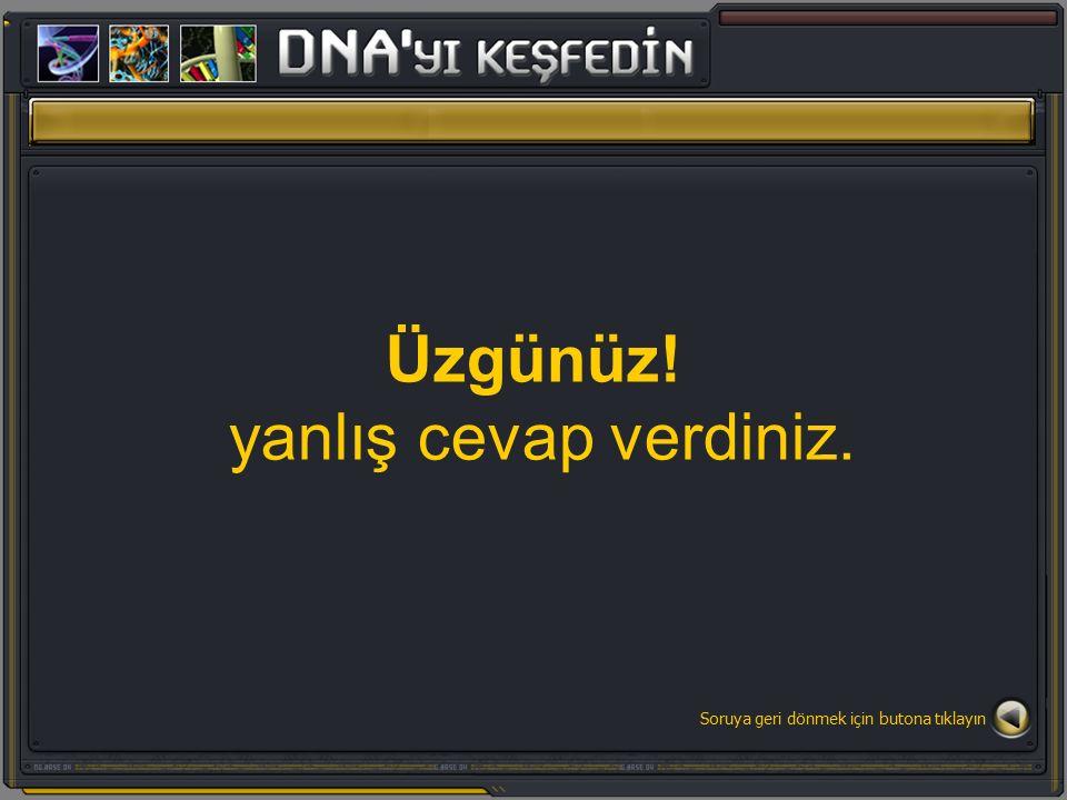 GENLERDEKİ GÖREV PAYLAŞIMI HAYRANLIK UYANDIRIYOR Doğru cevap A seçeneği DNA üzerindeki ikişerli olarak eşleşmiş A,C,G, T üst üste eklenerek genleri meydana getirirler.