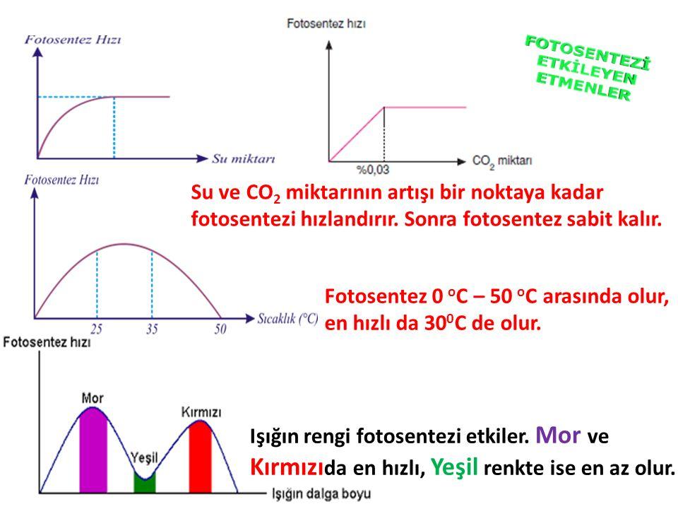 Su ve CO 2 miktarının artışı bir noktaya kadar fotosentezi hızlandırır. Sonra fotosentez sabit kalır. Fotosentez 0 o C – 50 o C arasında olur, en hızl