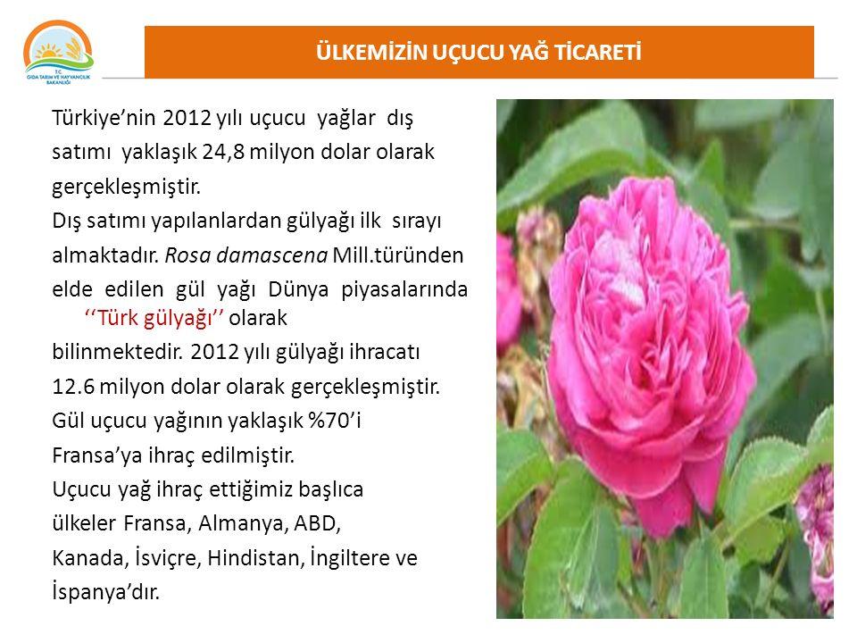 Türkiye'nin 2012 yılı uçucu yağlar dış satımı yaklaşık 24,8 milyon dolar olarak gerçekleşmiştir.
