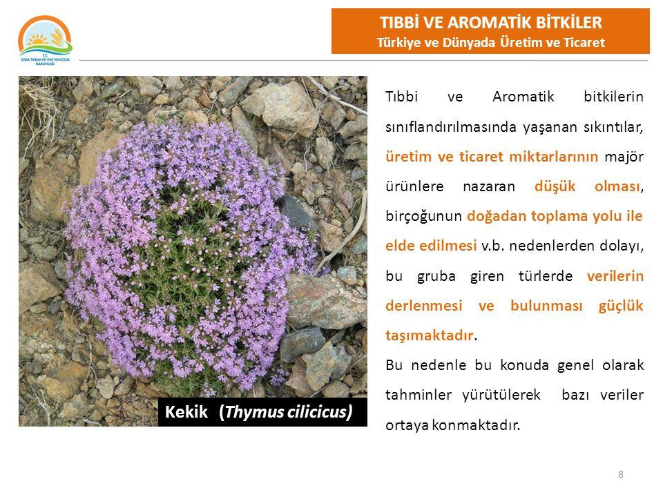 9 TIBBİ VE AROMATİK BİTKİLER Dünya Üretim Bazı Tıbbi ve Aromatik Bitkiler Üretimi ve İlk 3 Ülke %'leri * Ürün ÜretimSırasıyla Ülkelerin Üretim Yüzdeleri (1.000 ton) 1.Ülke%2.Ülke%3.Ülke%Türkiye% Sarımsak24.255Çin79Hindistan5G.