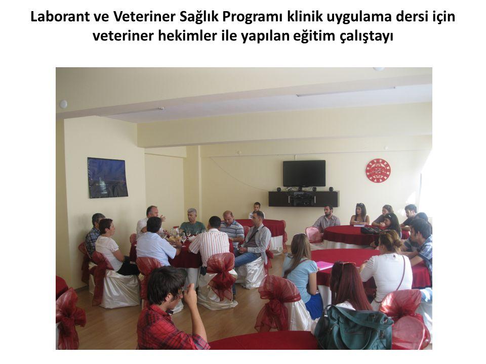 Laborant ve Veteriner Sağlık Programı klinik uygulama dersi için veteriner hekimler ile yapılan eğitim çalıştayı