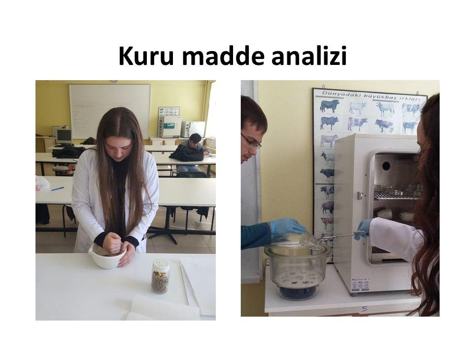 Kuru madde analizi