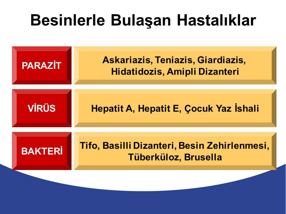 Besinlerle Bulaşan Hastalıklar PARAZİT Askariazis, Teniazis, Giardiazis, Hidatidozis, Amipli Dizanteri VİRÜSHepatit A, Hepatit E, Çocuk Yaz İshali BAKTERİ Tifo, Basilli Dizanteri, Besin Zehirlenmesi, Tüberküloz, Brusella