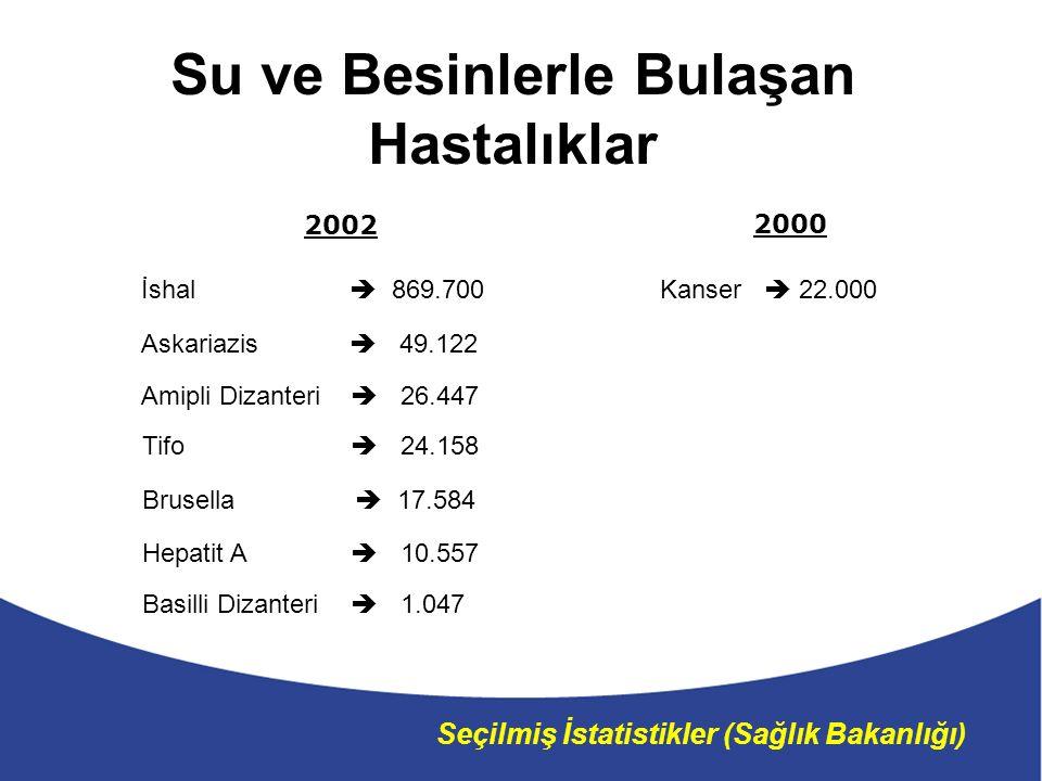 Seçilmiş İstatistikler (Sağlık Bakanlığı) 2002 Amipli Dizanteri  26.447 Basilli Dizanteri  1.047 Hepatit A  10.557 Tifo  24.158 Brusella  17.584 Askariazis  49.122 İshal  869.700 2000 Kanser  22.000 Su ve Besinlerle Bulaşan Hastalıklar
