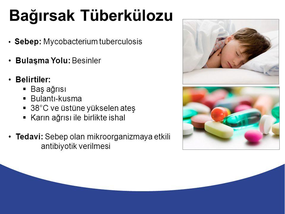 Bağırsak Tüberkülozu Sebep: Mycobacterium tuberculosis Bulaşma Yolu: Besinler Belirtiler:  Baş ağrısı  Bulantı-kusma  38°C ve üstüne yükselen ateş  Karın ağrısı ile birlikte ishal Tedavi: Sebep olan mikroorganizmaya etkili antibiyotik verilmesi