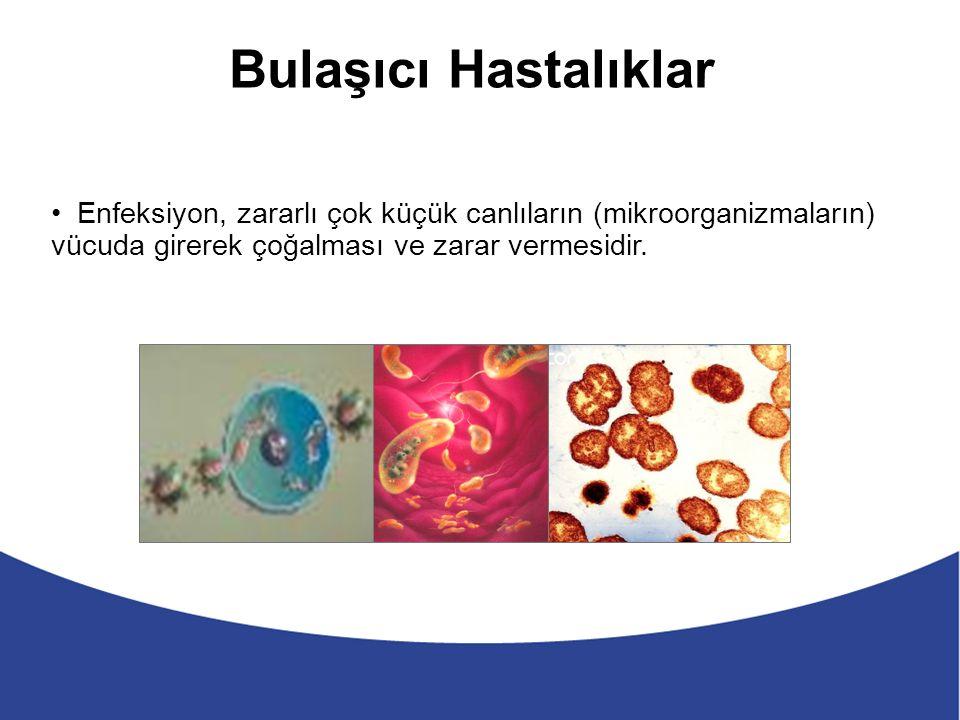 T.C Tarım ve Köy İşleri Bakanlığı Yönetmelik Resmi Gazete; 30.03.2005 tarih 27715 sayı Gıda işleme ve...............