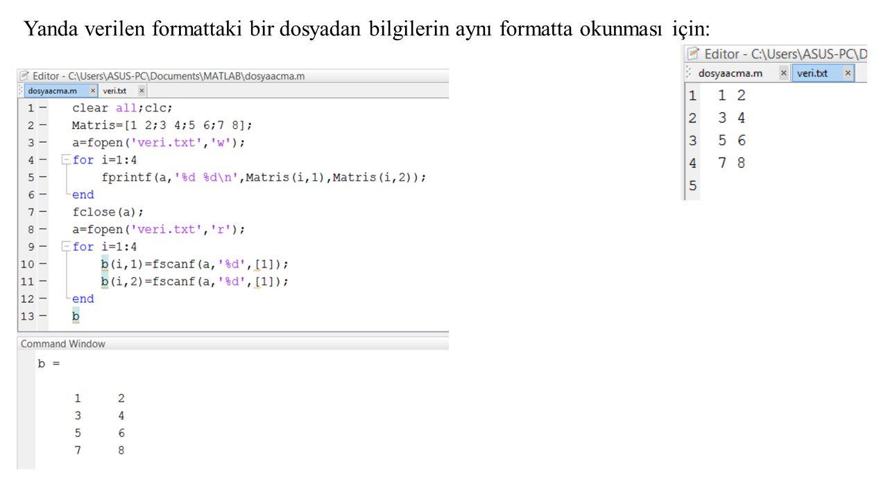 Yanda verilen formattaki bir dosyadan bilgilerin aynı formatta okunması için: