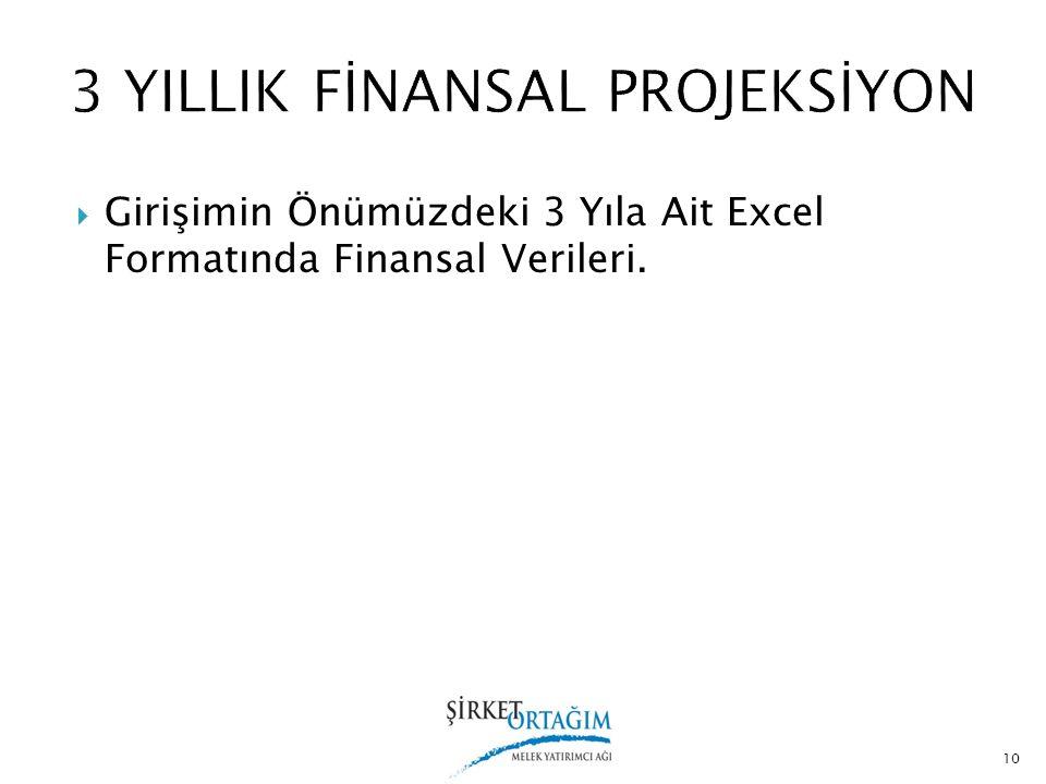  Girişimin Önümüzdeki 3 Yıla Ait Excel Formatında Finansal Verileri. 10