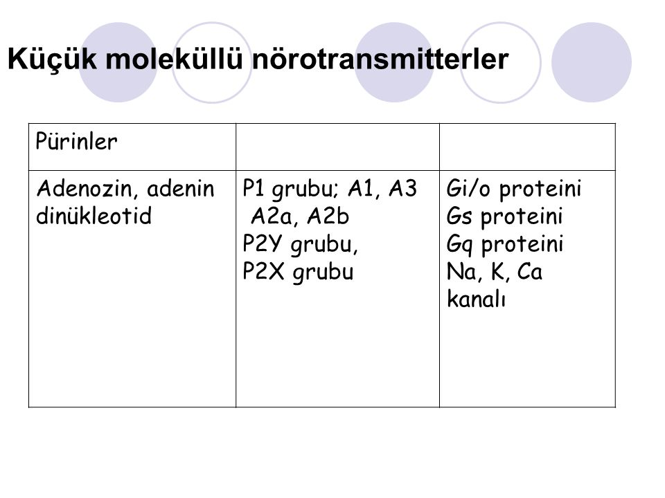 Küçük moleküllü nörotransmitterler Pürinler Adenozin, adenin dinükleotid P1 grubu; A1, A3 A2a, A2b P2Y grubu, P2X grubu Gi/o proteini Gs proteini Gq p
