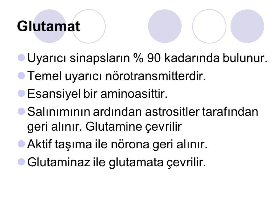 Glutamat Uyarıcı sinapsların % 90 kadarında bulunur. Temel uyarıcı nörotransmitterdir. Esansiyel bir aminoasittir. Salınımının ardından astrositler ta